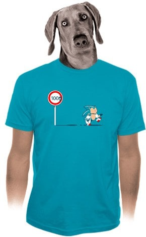 sonic shirt